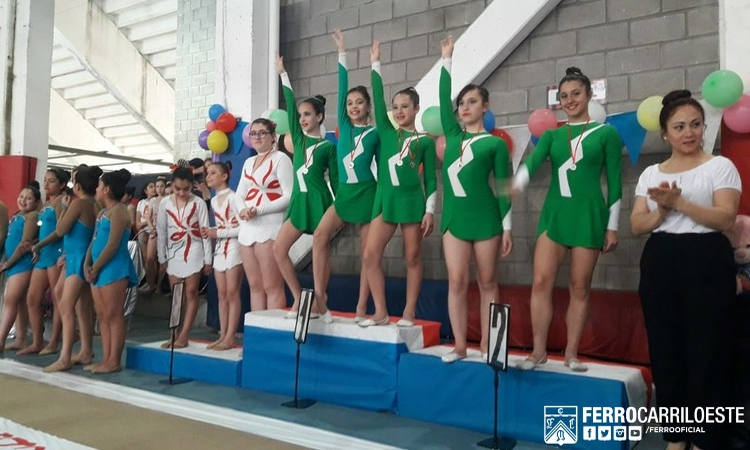 Competencia en gimnasia