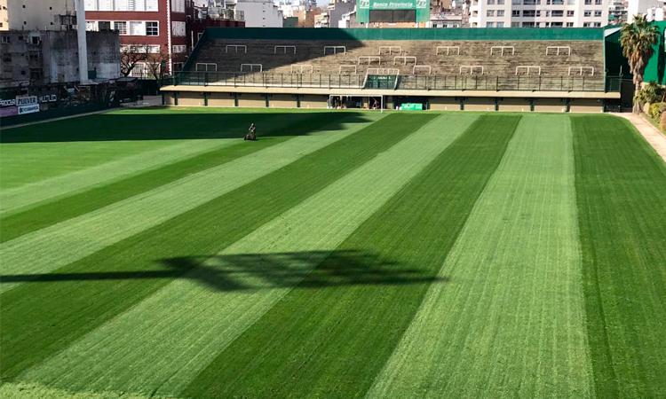 La renovación del campo de juego